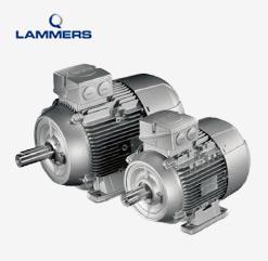 Einphasen-Wechselstrommotoren mit Betriebskondensator von Lammers