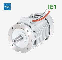 Brandgasmotoren von VEM auf IE1 Basis